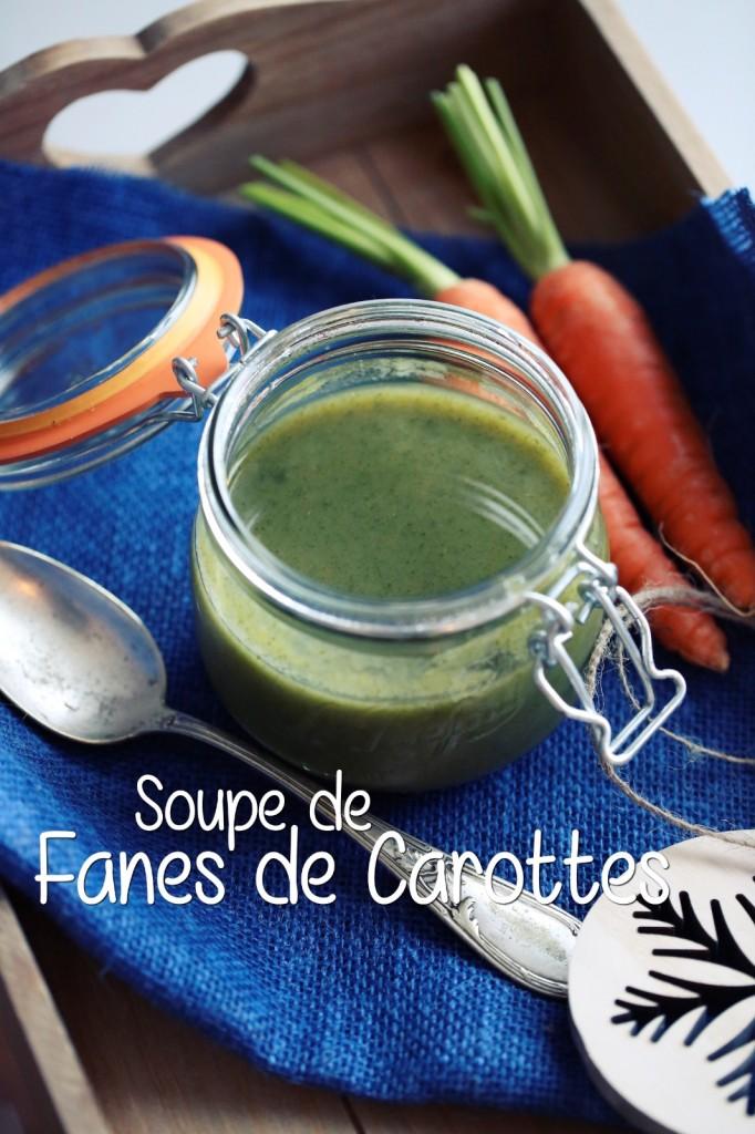 Soupe de fanes de carottes_040